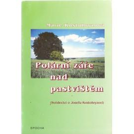 Polární záře nad pastvištěm - Marie Kostohryzová