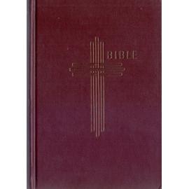 Bible (2006 13,5 x 19) s DT