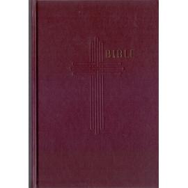 Bible (2006 13,5 x 19) bez DT