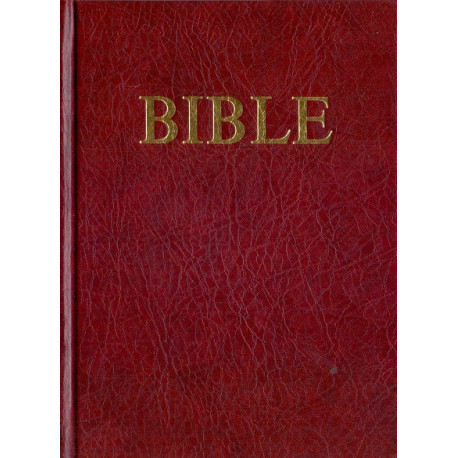 Bible (1991, vel. 14 x 18,5 cm)