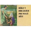 Bible v obrázcích pro malé děti - Kenneth N. Taylor